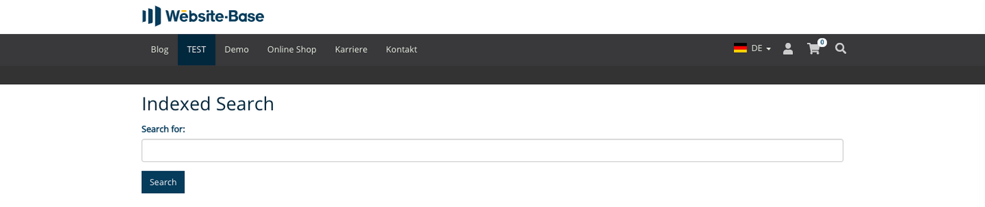 TYPO3 Content Element Form elements Indexed Search Frontend