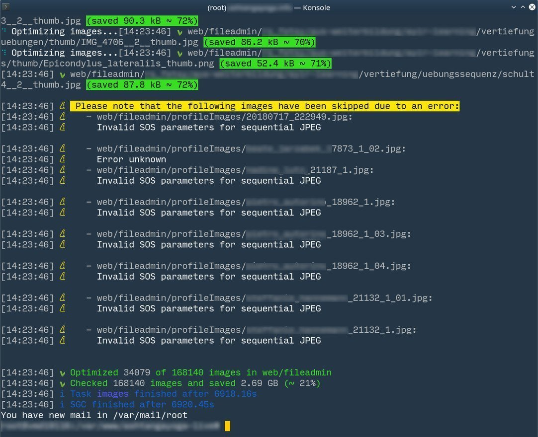 SGC v3 CSS Task Bildoptimierung Konsolenausgabe