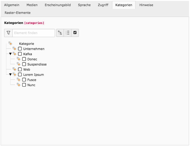TYPO3 Inhaltselement Tab Kategorien