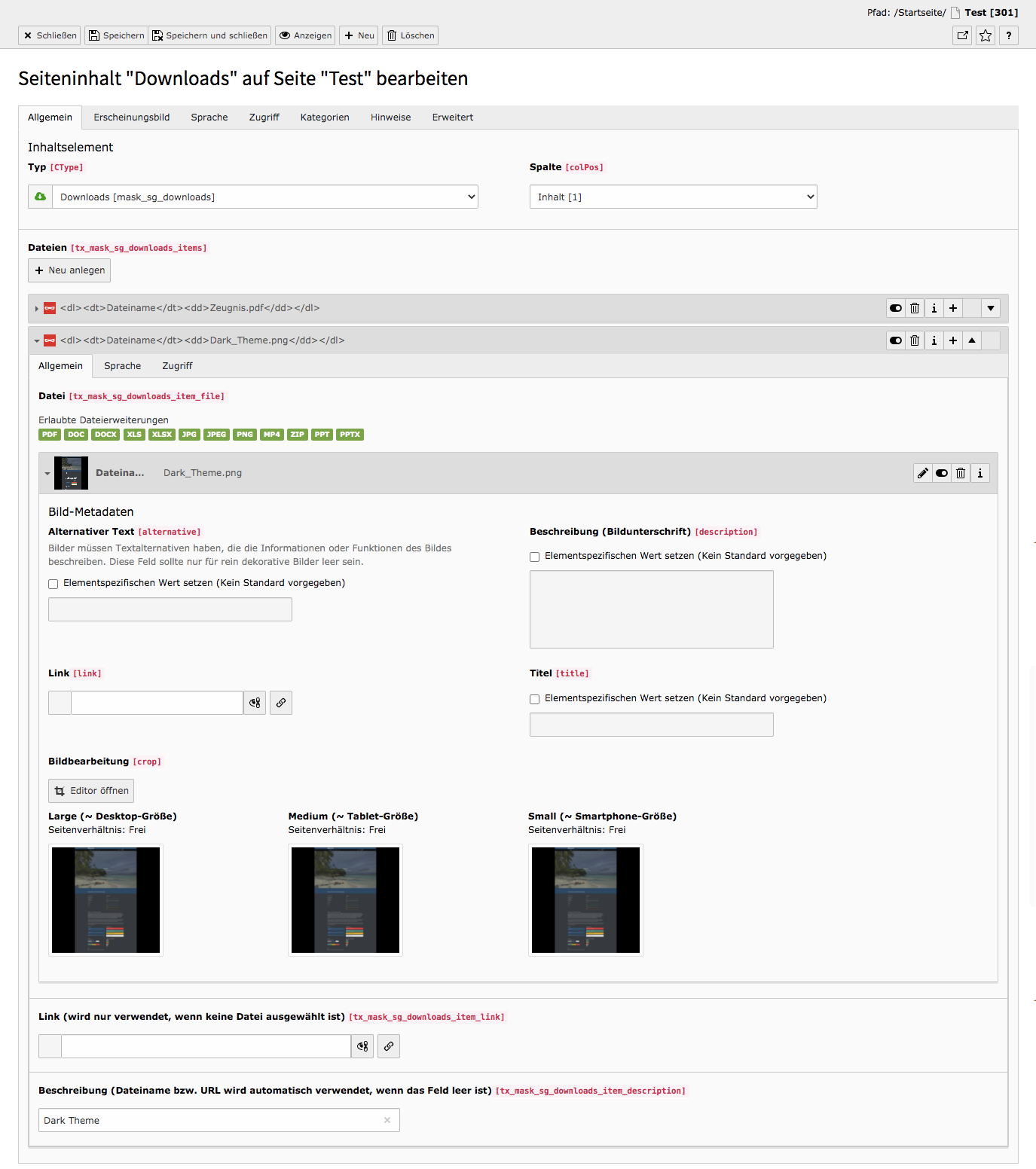 TYPO3 Inhaltselement Mask Elements Downloads Backend Reiter Allgemein