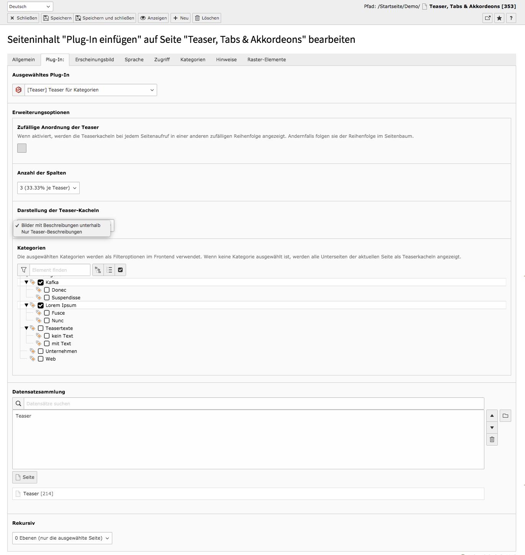 TYPO3 Inhaltselement Backend Reiter Plug-In Teaser für Kategorien
