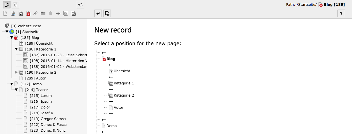 TYPO3 Create New wizard New Record