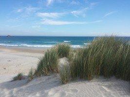 SandFly-Beach